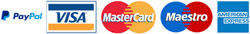 Transfer aziendale pagamento con carta di credito